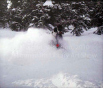 Loving the Powder