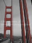 Golden Gate Bridge by Nisha Punatar