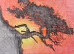 Tree by Jean Gutierrez