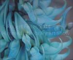 Blue at Kew