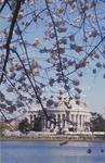 Spring in Washington, D.C.