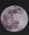 Brave Moon