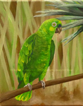 The Bird by Christina Gallerani