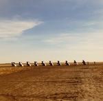 Cadillac Ranch I by Anna Simon